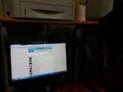 An ninh Xã hội - Công an Hà Nội mở cuộc triệt phá hàng loạt web đen