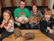 Phi thường - kỳ quặc - Gia đình sống chung với 145 con vật dị thường