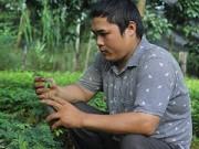 Bạn trẻ - Cuộc sống - Chàng trai tật nguyền và vườn ươm trăm triệu