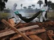 Sức khỏe đời sống - Đã có kết quả xét nghiệm của người nghi nhiễm Ebola ở Đà Nẵng