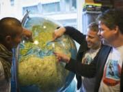 Kỷ lục Guinness - Đi du lịch 19 nước chỉ trong 24 giờ