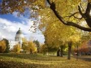 Du lịch - Say đắm cảnh sắc tiểu bang đẹp nhất nước Mỹ