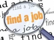 Cẩm nang tìm việc - Năm chiêu tìm công việc mới