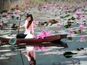 Du lịch - Vãn cảnh chùa Hương mùa hoa Súng