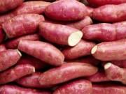 Sức khỏe đời sống - Đừng ăn khoai lang khi mắc bệnh thận!