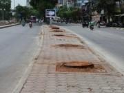 Tin tức trong ngày - Lại chặt cây để làm đường sắt Nhổn – Ga Hà Nội