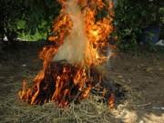 An ninh Xã hội - Bố chất rơm đốt con vì trộm vài gói mì tôm
