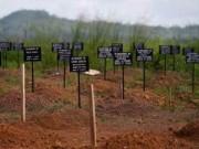 Liên Hợp Quốc không đạt mục tiêu đẩy lùi đại dịch Ebola