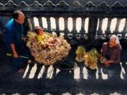 Du lịch - 15 bức ảnh đẹp sững sờ về thiên nhiên, con người VN