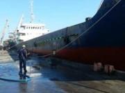 Tin tức trong ngày - Đà Nẵng: Tàu cá bị đâm chìm, 8 ngư dân thoát nạn
