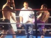 Thể thao - Võ sĩ knock-out đối thủ bằng đòn đá xoay cực độc