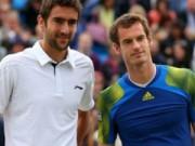 Thể thao - Murray - Cilic: Cân tài, cân sức (Giải tennis Ngoại hạng)