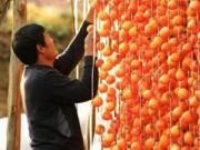 Thị trường - Tiêu dùng - Chế biến hồng khô theo 'tuyệt chiêu' của người Nhật