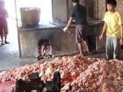 """Thị trường - Tiêu dùng - Yêu cầu xác minh thông tin """"mỡ bẩn, bì lợn thối"""" tại Hưng Yên"""