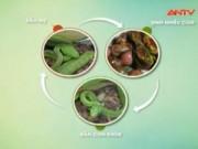 Video An ninh - Nhiễu loạn thông tin về sự hoành hoành của rắn lục đuôi đỏ