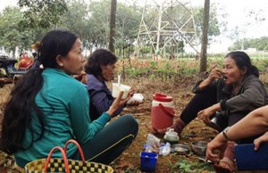 Tin tức Việt Nam - Thả rắn ra cộng đồng, tội gì?