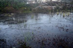 Tin tức trong ngày - Lào Cai: Thời tiết lạnh giá, nước đóng thành băng