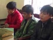 Bản tin 113 - Phá đường dây tuồn cần sa từ Lào về Việt Nam