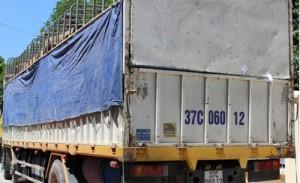 Tin tức Việt Nam - Bắt giam Đội phó Đội Kiểm lâm nhận hối lộ