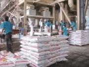 Thị trường - Tiêu dùng - Giá thức ăn chăn nuôi Việt Nam cao hơn thế giới 20%