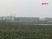 Video An ninh - Quy hoạch treo, người dân Thủ đô lụp xụp đón Tết