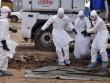 Virus Ebola quay trở lại châu Âu