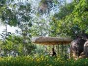 Du lịch - Chùa đá Việt lọt top công trình tín ngưỡng ấn tượng TG
