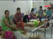 Video An ninh - Sốt xuất huyết vào đỉnh dịch, 40.000 ca mắc bệnh