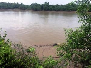 Tin tức Việt Nam - Đang đánh cá, tá hỏa phát hiện thi thể trôi sông