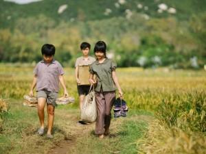 """Phim - Sao Việt hết lời khen """"Tôi thấy hoa vàng trên cỏ xanh"""""""