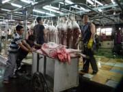 Thị trường - Tiêu dùng - TPP: Cửa nào cho ngành chăn nuôi?