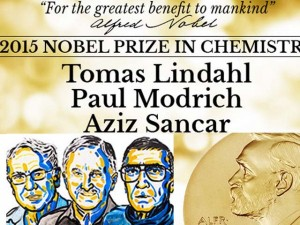 Lộ diện người giành giải Nobel Hóa học 2015