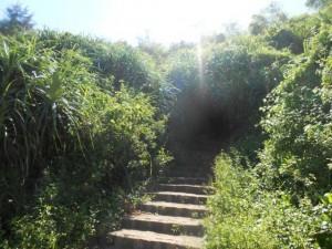 Du lịch - Địa đạo Vịnh Mốc- kỳ tích sống trong lòng đất Quảng Trị