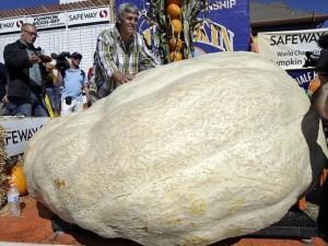 Kỷ lục thế giới: Quả bí ngô lớn nhất