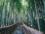 Du lịch - Ngắm vẻ đẹp cổ kính pha lẫn hiện đại của Nhật Bản