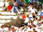 Thể thao - Kinh hoàng: Bò tót lao lên khán đài húc khán giả