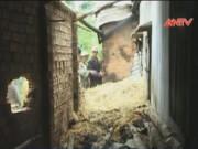 Video An ninh - Nghịch lửa sau nhà, hai bé trai chết cháy