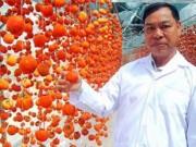 Thị trường - Tiêu dùng - Giải cứu quả hồng đặc sản
