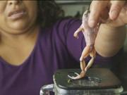 "Phi thường - kỳ quặc - 10 món ăn truyền thống khiến du khách ""hoảng hồn"""