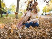 Bạn trẻ - Cuộc sống - Chú chó phá bĩnh ảnh đính hôn của chủ vì ghen tị
