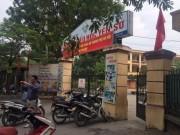 Tin tức trong ngày - Ong đốt hơn 50 HS tiểu học ở Hà Nội thuộc loại gì?