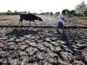 Tin tức trong ngày - Lo ngại nhiều nước xây hồ chứa sẽ ảnh hưởng đến VN