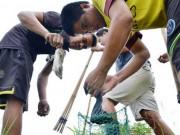 Tin tức trong ngày - Theo chân thợ săn chuột đồng ở Thủ đô