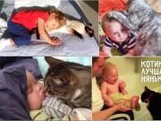 """Bạn trẻ - Cuộc sống - Khoảnh khắc """"âu yếm"""" ngọt lịm của bé và mèo cưng"""