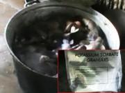 Tin tức trong ngày - Khô bò làm từ phổi heo và hóa chất