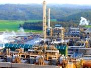 """Thị trường - Tiêu dùng - Giá dầu giảm mạnh: Doanh nghiệp trong nước lo """"sốt vó"""""""
