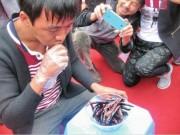 """Phi thường - kỳ quặc - """"Vã mồ hôi"""" xem cuộc thi ăn ớt giỏi nhất Trung Quốc"""