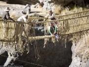Du lịch - Hết hồn với cây cầu bắc ngang sông sâu làm từ… cỏ