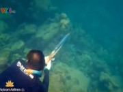 Du lịch - Săn cá trên vùng biển Phú Quốc