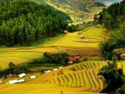 Du lịch Việt Nam - Việt Nam lọt top 6 quốc gia an toàn cho du khách